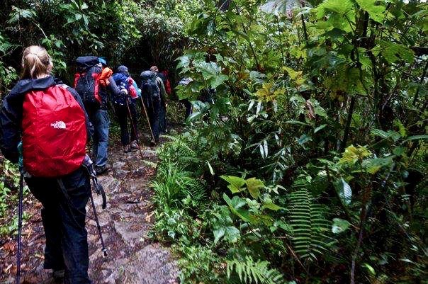 Best hike with family to Machu Picchu Cusco -Peru